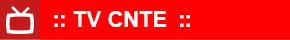 campanhas_icone_cnte_tv_290x40.jpg - 5,17 kB