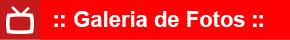 campanhas_icone_galeria_290x40.jpg - 6,94 kB